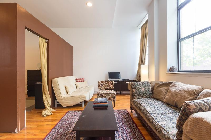 Living Room - Huge SpaHa Loft Sleeps 8 - New York City - rentals