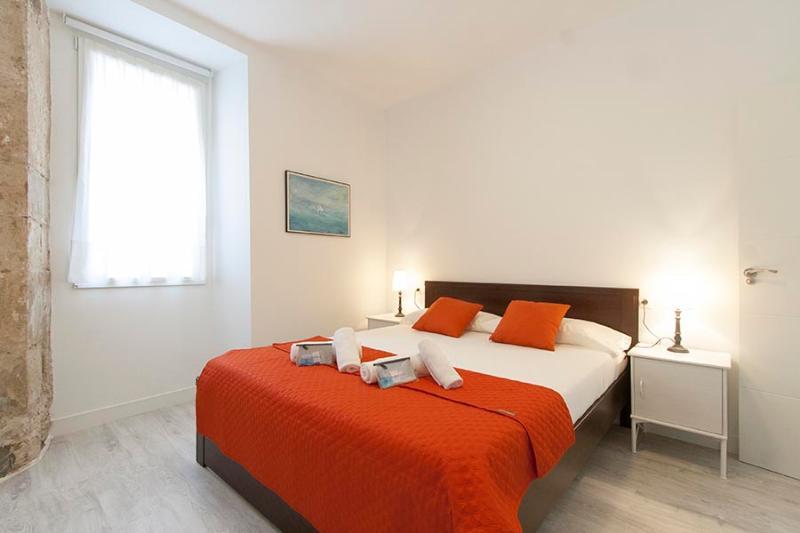 Coeur - Image 1 - San Sebastian - rentals