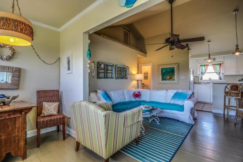 Dog-friendly beach home with a colorful interior - walk to the beach! - Image 1 - Galveston - rentals