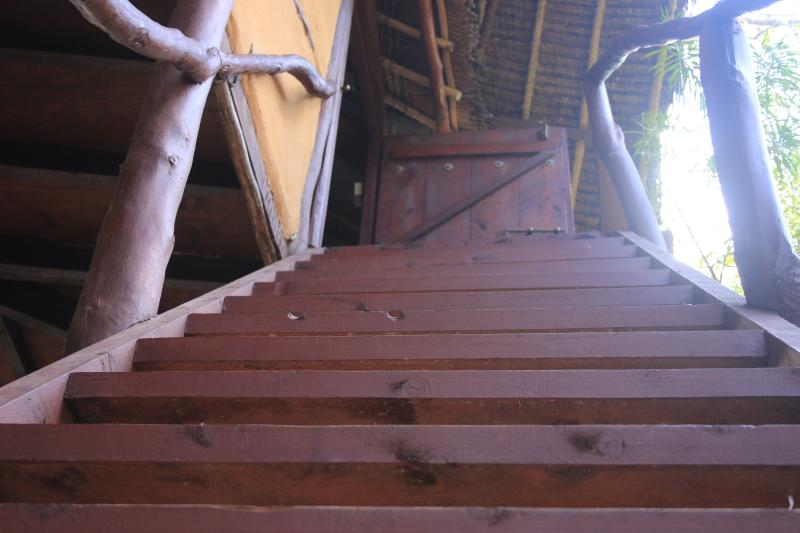 stairs leading to suli treehouse - Suli Tree house - Diani - rentals