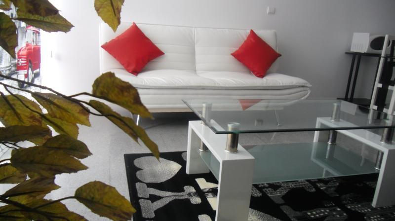 Sala - Apartments In Valencia. Un dormitorio +sofa cama - Valencia - rentals