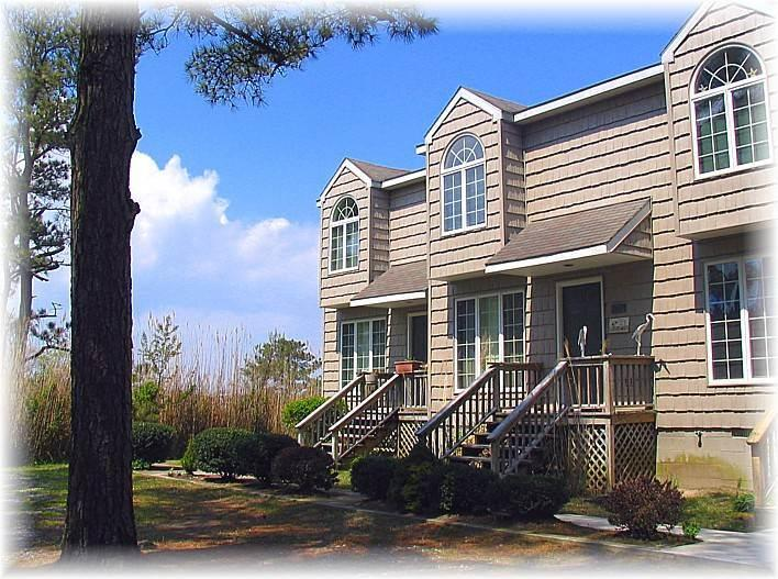 Misty's Thicket - Image 1 - Chincoteague Island - rentals