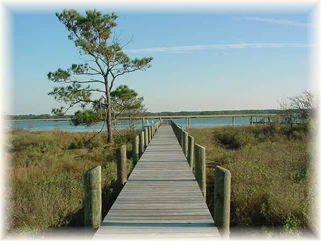 Wildflower - Image 1 - Chincoteague Island - rentals