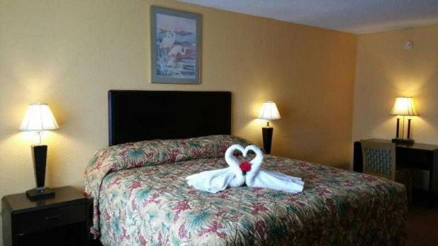 Single Bed Room View - Continental Inn Kissmmee Walt Disney World Area - Kissimmee - rentals
