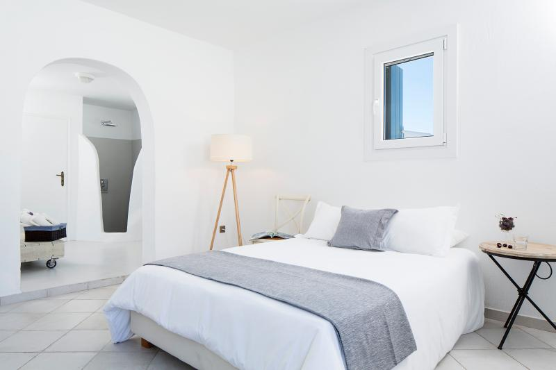 Deluxe Suite Mykonos-Luxury Suite with Pool - Image 1 - Mykonos - rentals