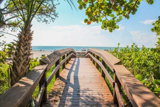 Walkway to Beach - Apollo 505 - Apollo Condominium - Marco Island - rentals