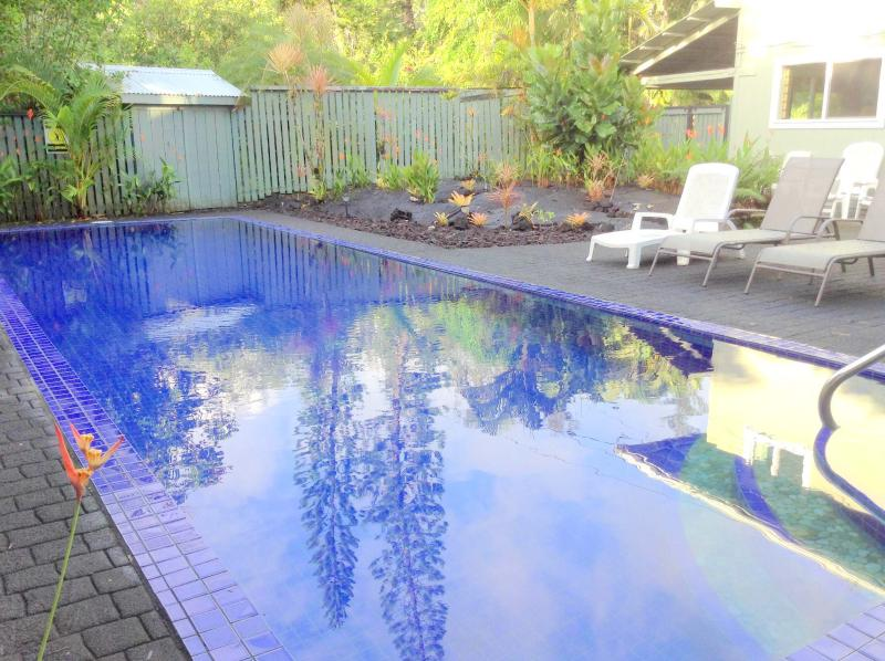 Your own beautiful, private pool - Ocean View Pool  Jacuzzi 4BR 3Ba 25% off Feb 2017 - Keaau - rentals