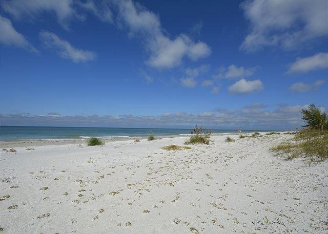 Beautiful Indian Shores Beach - Authentic Indian Shores Stilt Beach House - Indian Shores - rentals