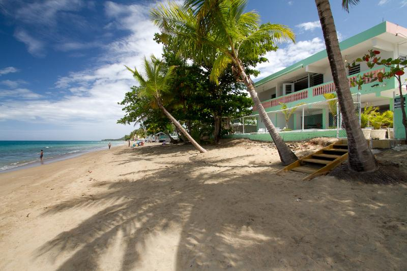 Beach View - Rincon Beachfront 8th and Ocean Sleeps 6-26 - Rincon - rentals