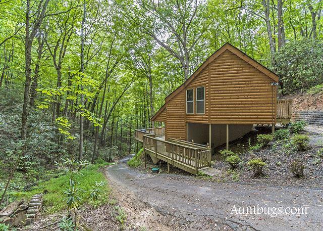 Cozy Hidden 1 Bedroom Cabin Just 5 Minutes Away from Downtown Gatlinburg - Image 1 - Gatlinburg - rentals