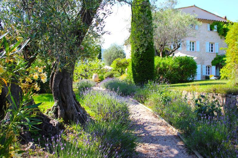 Near Grasse, on Famed Côte d'Azur, 5 Bedrooms, Heavenly Garden & Pool - Image 1 - Entrevennes - rentals