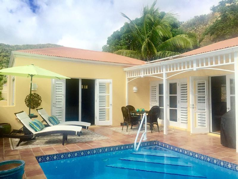 Private Pool Deck with comfortable seating and lounges - Tropic Jewel- Upscale Private Pool Villa - Teague Bay - rentals
