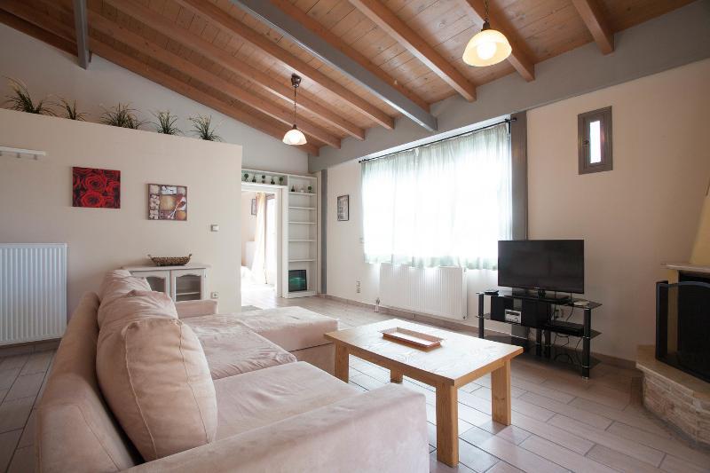 Living Room - Valashouse - Athens - rentals