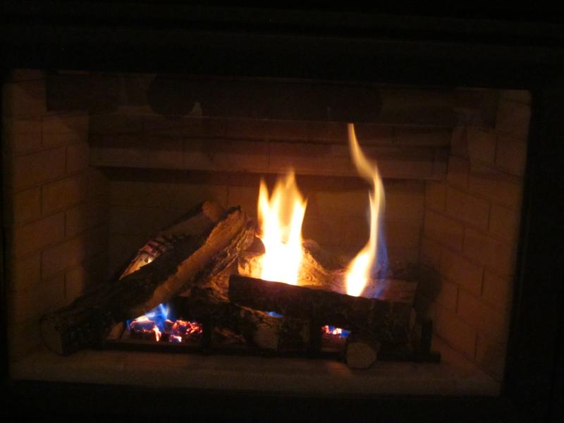 2 fireplaces, in the living room and Master bedroom - Toronto outskirts, Milton relaxing oasis - Toronto - rentals