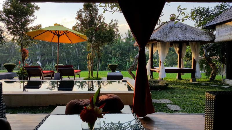 View from the living room - Villa Padi Menari in the lush rice fields - Ubud - rentals