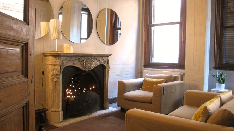 eclectic mix of modern and antique furniture - stylish gem with nightlife at doorstep - Istanbul - rentals