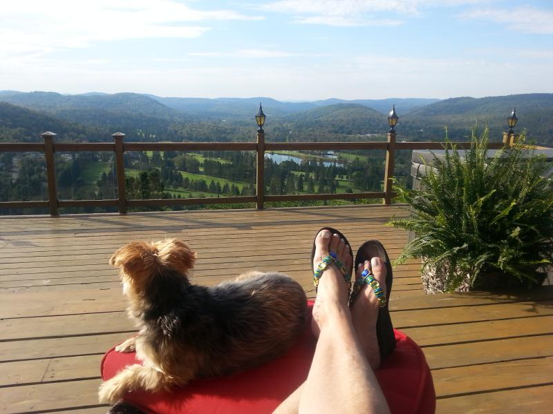 EVEN THE DOG LOVES THIS VIEW - The Belleview - Quebec - rentals