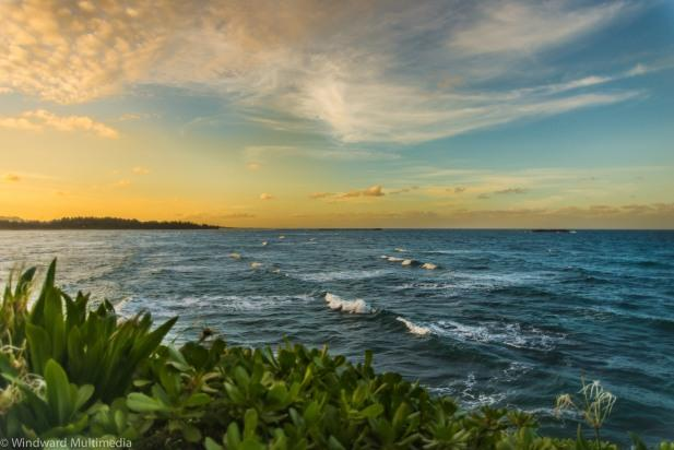 Hibiscus Estate - Winter Specials! Enjoy the view! - Image 1 - Laie - rentals