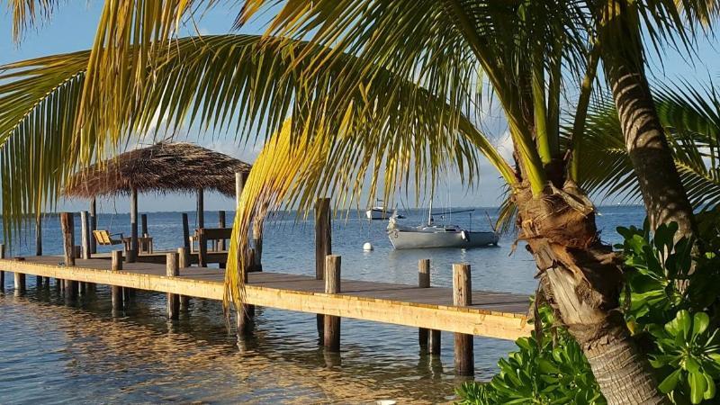 Kai Rumba - Image 1 - Grand Cayman - rentals