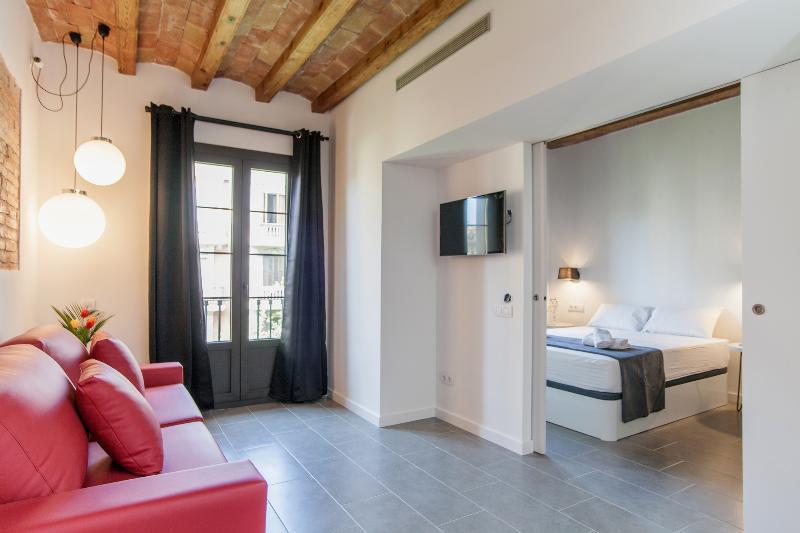 EIXAMPLE CENTER DELUXE - Genuine Barcelona (4-6 p) - Image 1 - Barcelona - rentals