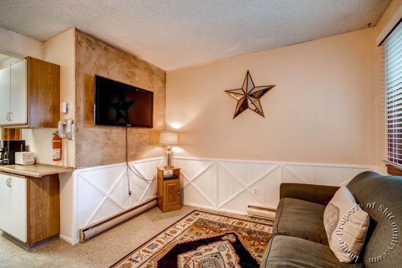 Park Meadows Lodge 1A by Ski Country Resorts - Image 1 - Breckenridge - rentals