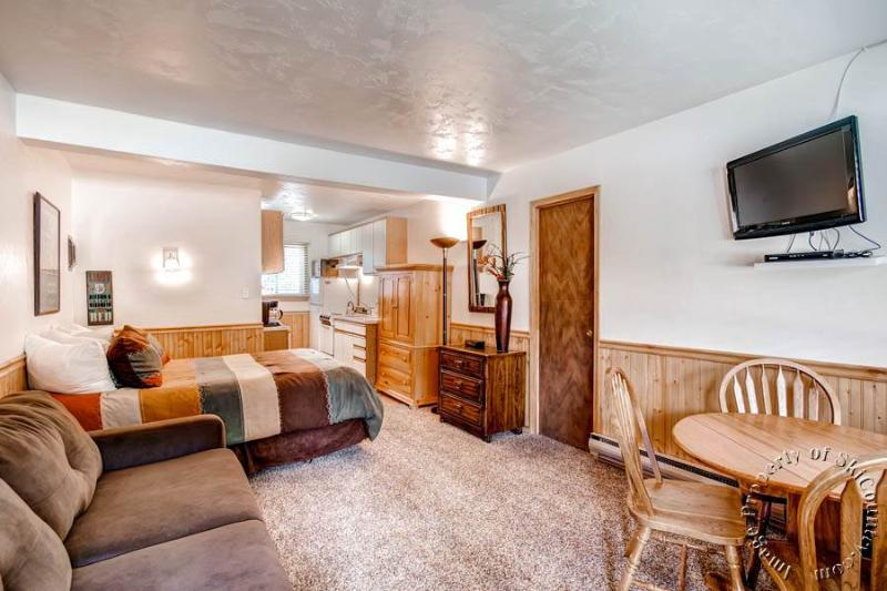Park Meadows Lodge 3B by Ski Country Resorts - Image 1 - Breckenridge - rentals