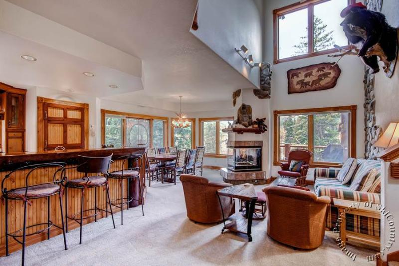 The Woods Townhomes 110 by Ski Country Resorts - Image 1 - Breckenridge - rentals