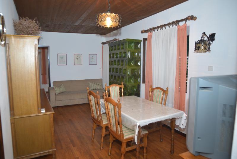 A1(5+1): living room - 4947 A1(5+1) - Kukljica - Kukljica - rentals