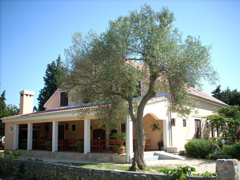 house - 4997 A8(2+2) - Ugljan - Ugljan - rentals