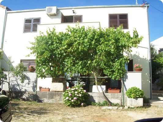 house - 5180  A1(4) - Cunski - Cunski - rentals