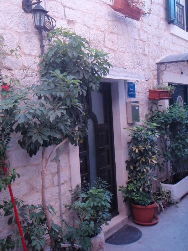 flourish plant (house and surroundings) - 5606 A1(5+2) - Trogir - Trogir - rentals
