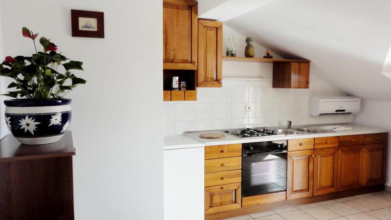 Apartments Darko - 68761-A4 - Image 1 - Krk - rentals