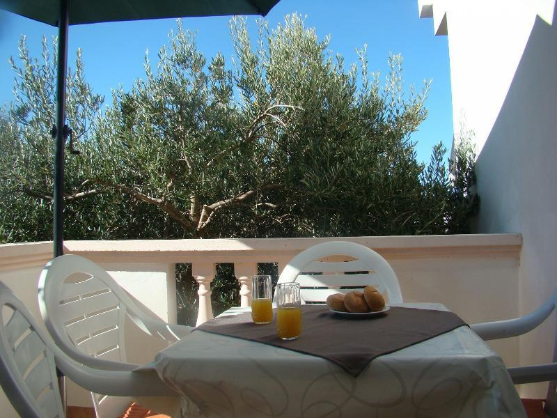 A105(2+2): terrace - 001BIBI A105(2+2) - Bibinje - Bibinje - rentals