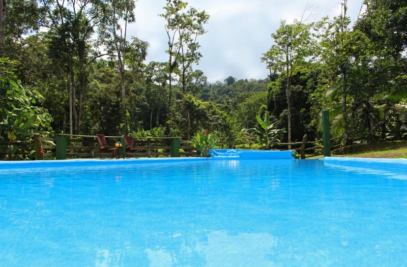 Welcome to Arenal Rain Forest Estate; a three bedroom house with a/c and a pool! - CDCR - Arenal Rain Forest Estate - La Fortuna de San Carlos - rentals