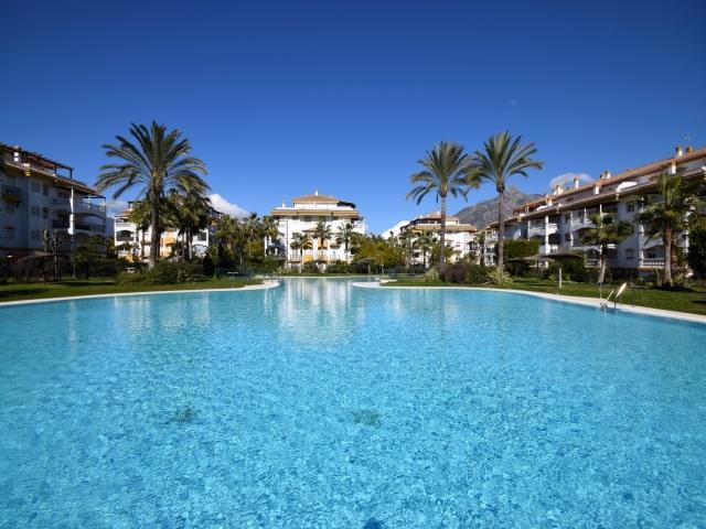 Dama de Noche 23229 - Image 1 - Marbella - rentals