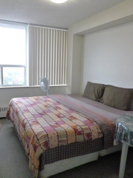 Comfy King size Bed with amazing city view in daytime - Toronto Downtown - Best Value!! - Toronto - rentals