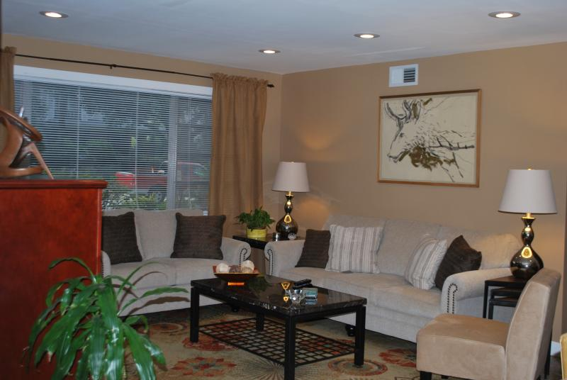 Living Room With Queen Sized Sleeper Sofa - Large Uptown Condo W/Pking-Easy Access to All NOLA - New Orleans - rentals