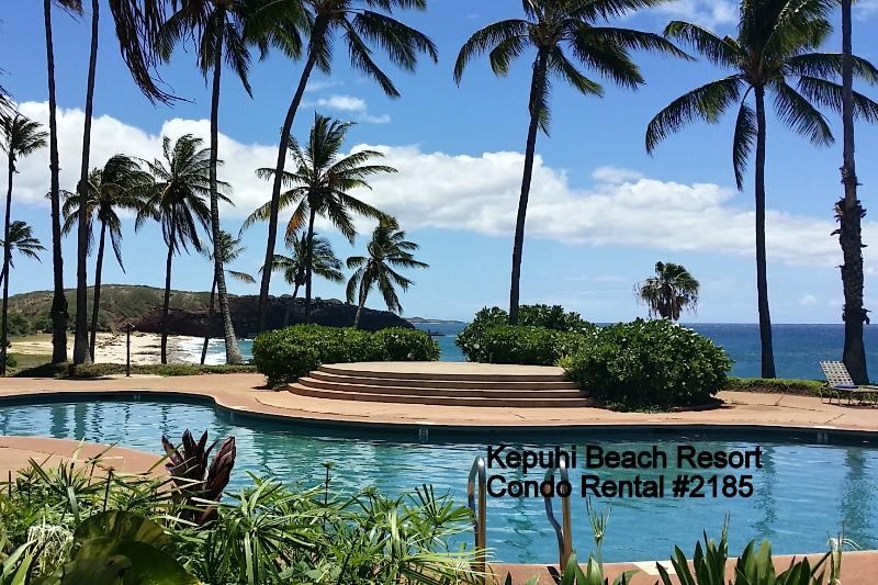 Lovely upstairs unit with queen bed in loft and queen sofa sleeper. W/D and D/W, secure WIFI, cable. - #2185 (1 of 5 Beach Front Units) @ Kepuhi Beach - Maunaloa - rentals