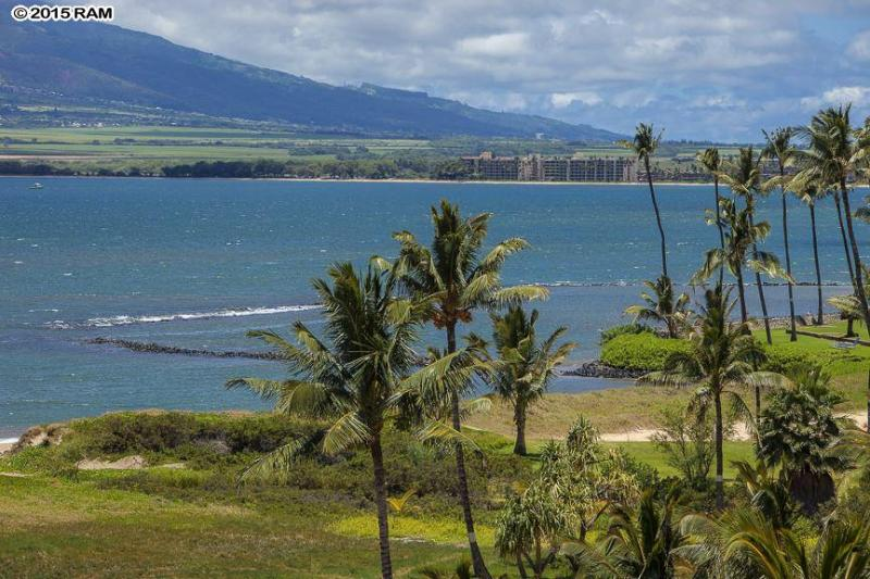Panoramic Expansive views - Panoramic Views from Penthouse  *ASK FOR SPECIALS* - Kihei - rentals