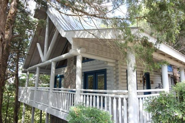 Alpine Something Blue - ALPINE SOMETHING BLUE - Pigeon Forge - rentals