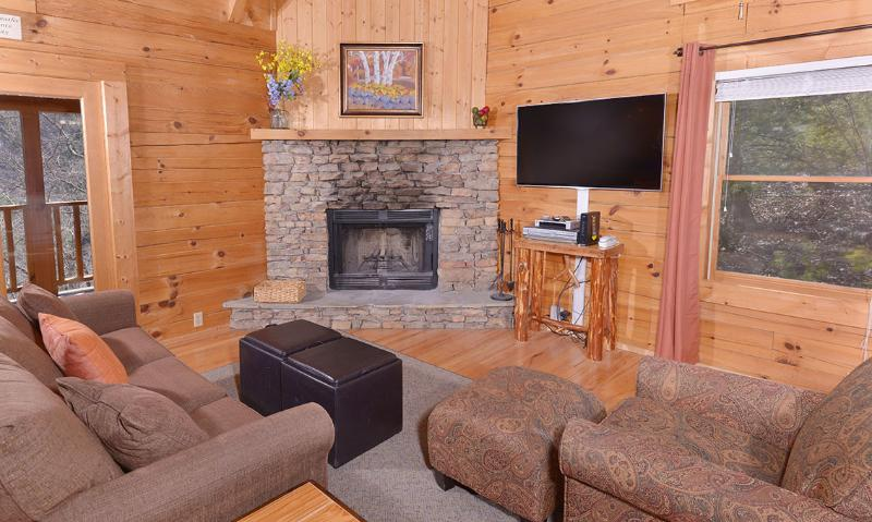Big Chill - Image 1 - Pigeon Forge - rentals