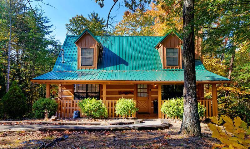 Smoky Bear's Cabin - Image 1 - Gatlinburg - rentals