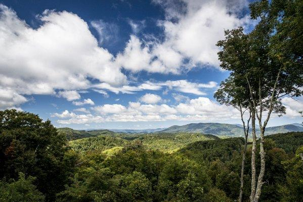 Above It All - Image 1 - Blowing Rock - rentals