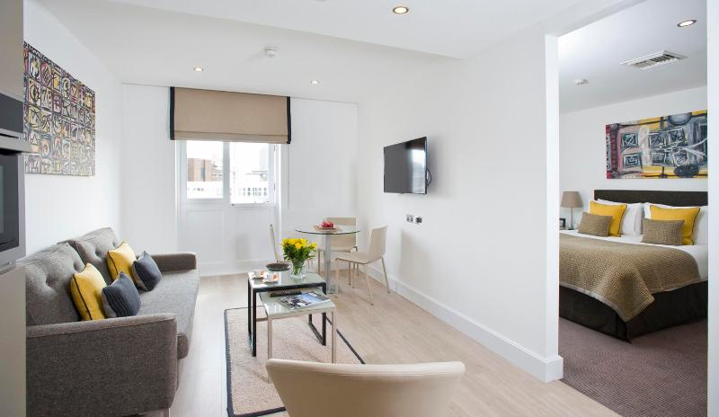 Posh 1 Bedroom Apartment in Central London - Image 1 - London - rentals