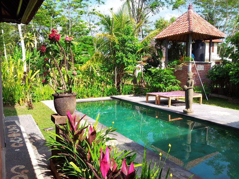 Swallow Guesthouse pool - Single Family Group quiet retreat near Ubud Bali - Ubud - rentals