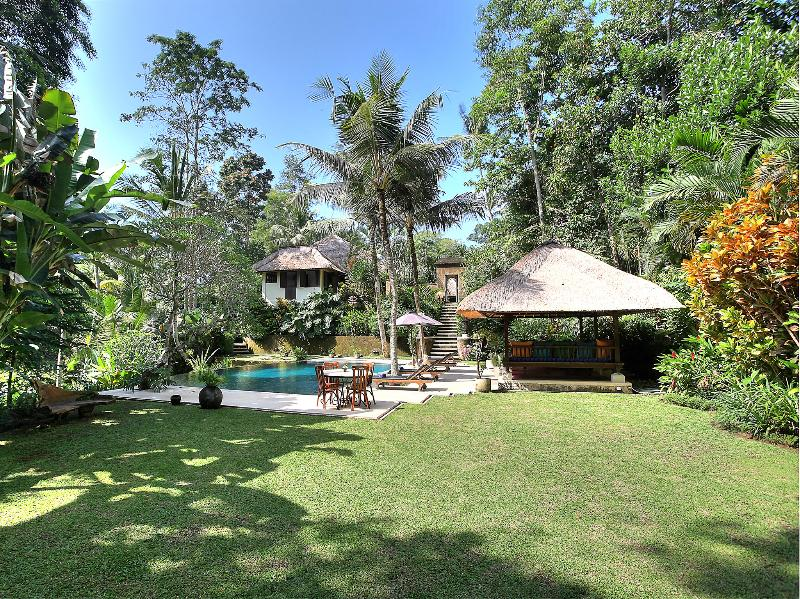 Villa Alamanda - Lawn and pool - Villa Alamanda - an elite haven - Ubud - rentals