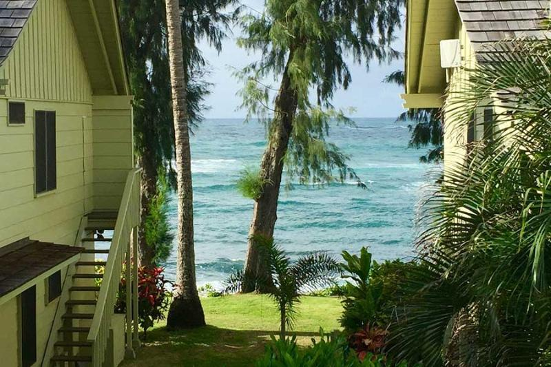 ocean view - Ocean View Studio - Kapaa - rentals