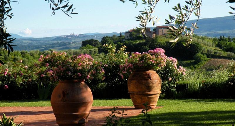 One of Four Apartments on Large Tuscan Estate - Certaldo 2 - Image 1 - Lucardo - rentals