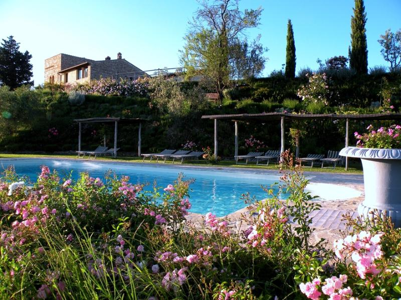 One of Four Apartments on Large Tuscan Estate - Certaldo 4 - Image 1 - Lucardo - rentals