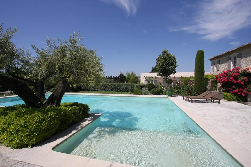 Beautiful Provencal Villa on Estate with Pool Near St Remy - Hortensia - Image 1 - Saint-Remy-de-Provence - rentals